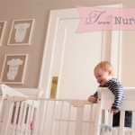 Charlotte & North's Sweet Twin Nursery