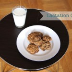 Mini Piccolini's Lactation Cookies
